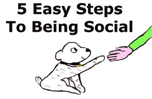 5 easy steps to being social