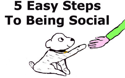 5 Easy Steps To Becoming A Social Guru